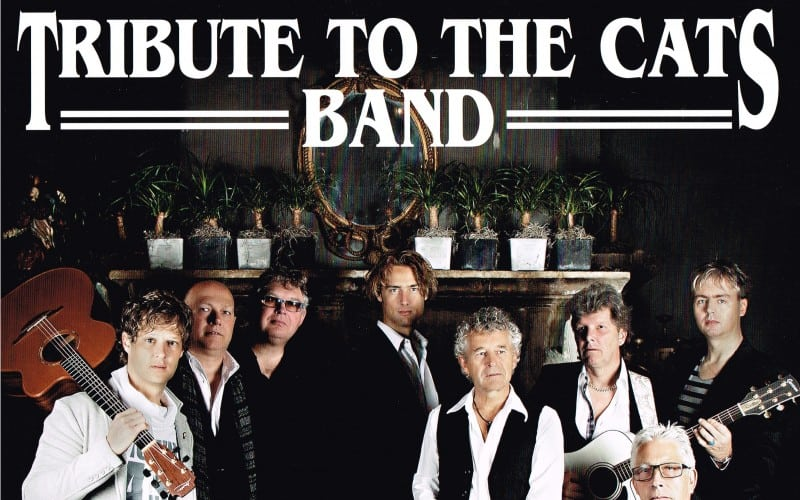 Tribute to the Cats band (Cats tribute)