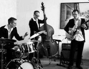soul jazz trio voordelig boeken bij Burolivemuziek.nl