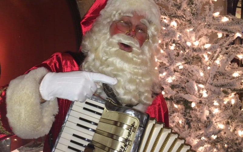 Kerstman met Accordeon